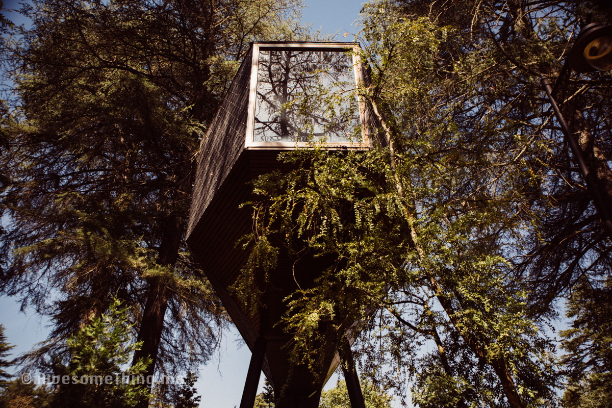 TreeHouse Portugal