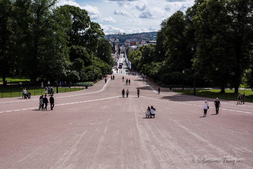 Королевский дворец и парк, Осло с детьми