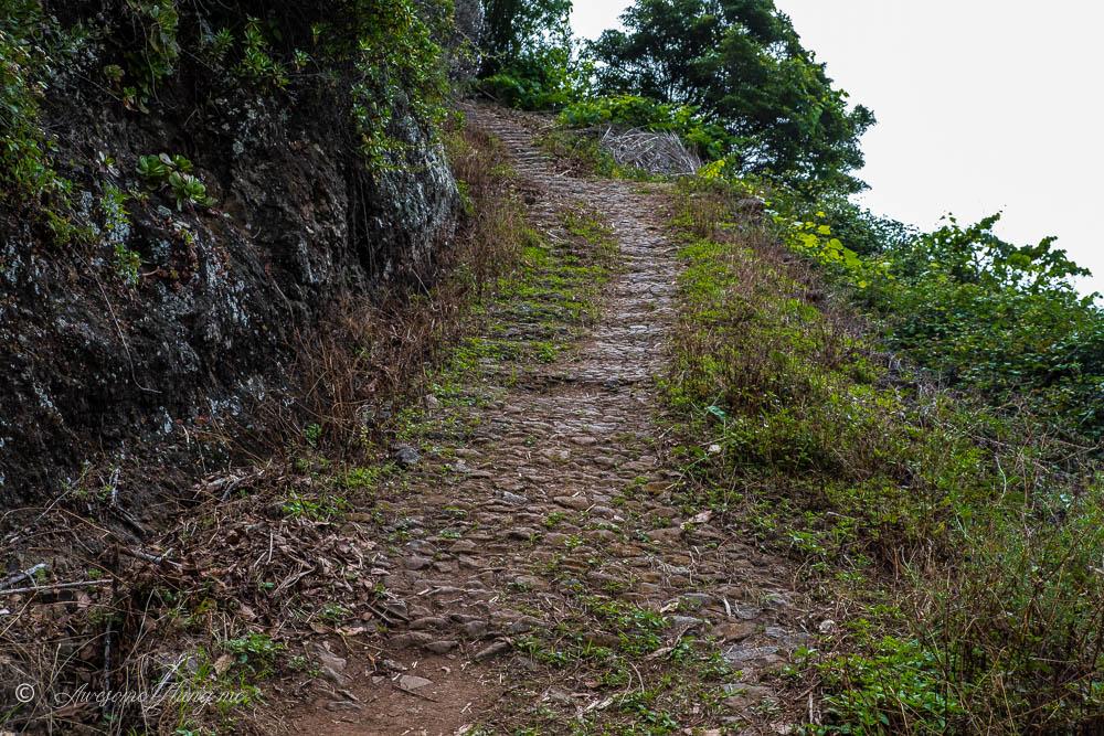 The Sao Jorge coastal path